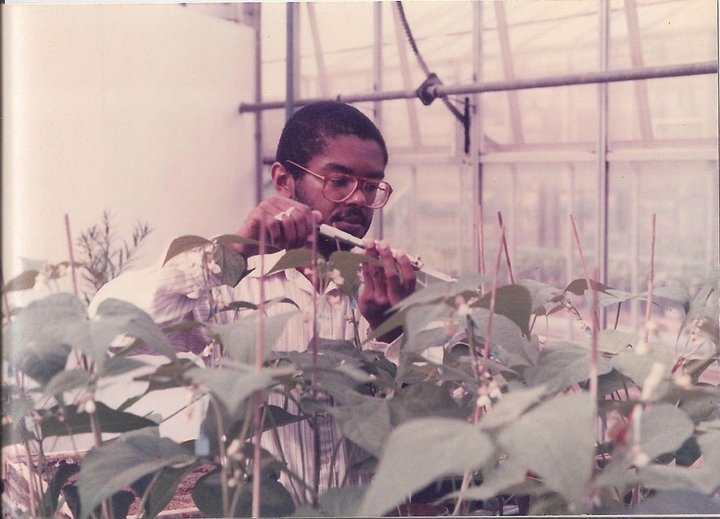 James Fletcher | Treating Plants at Applied Biology Field Station