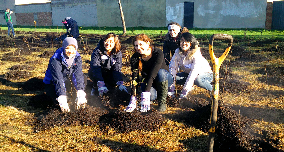 Chevening Scholars planting trees